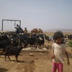 nomades berbères au puits